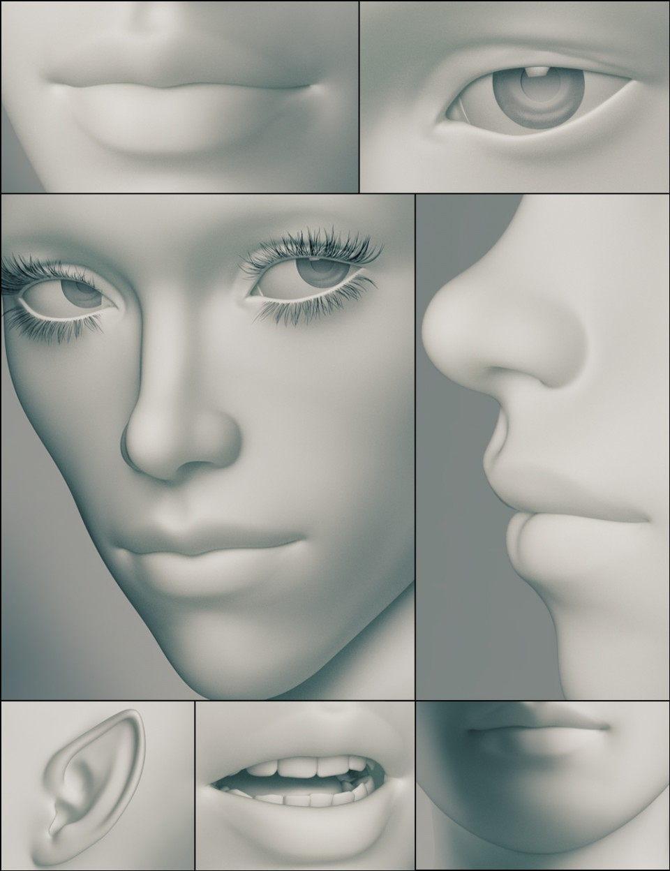 Genesis 3 Female Head Morphs